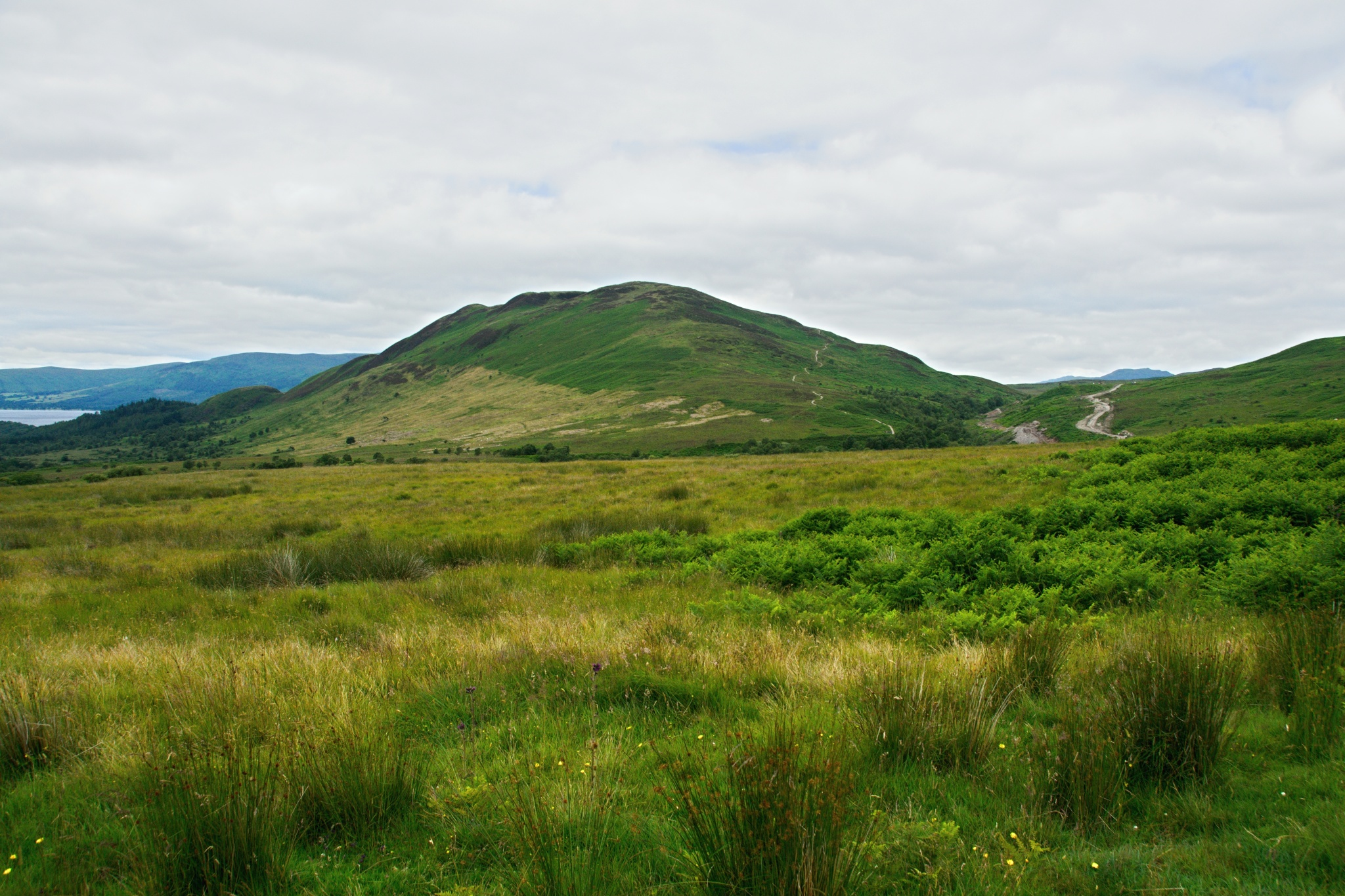361 metrů vysoký kopec Conic Hill
