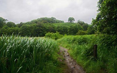 Dlouhá cesta podél jezera Loch Lomond (Sallochy-Doune Bothy, WHW den 3.)