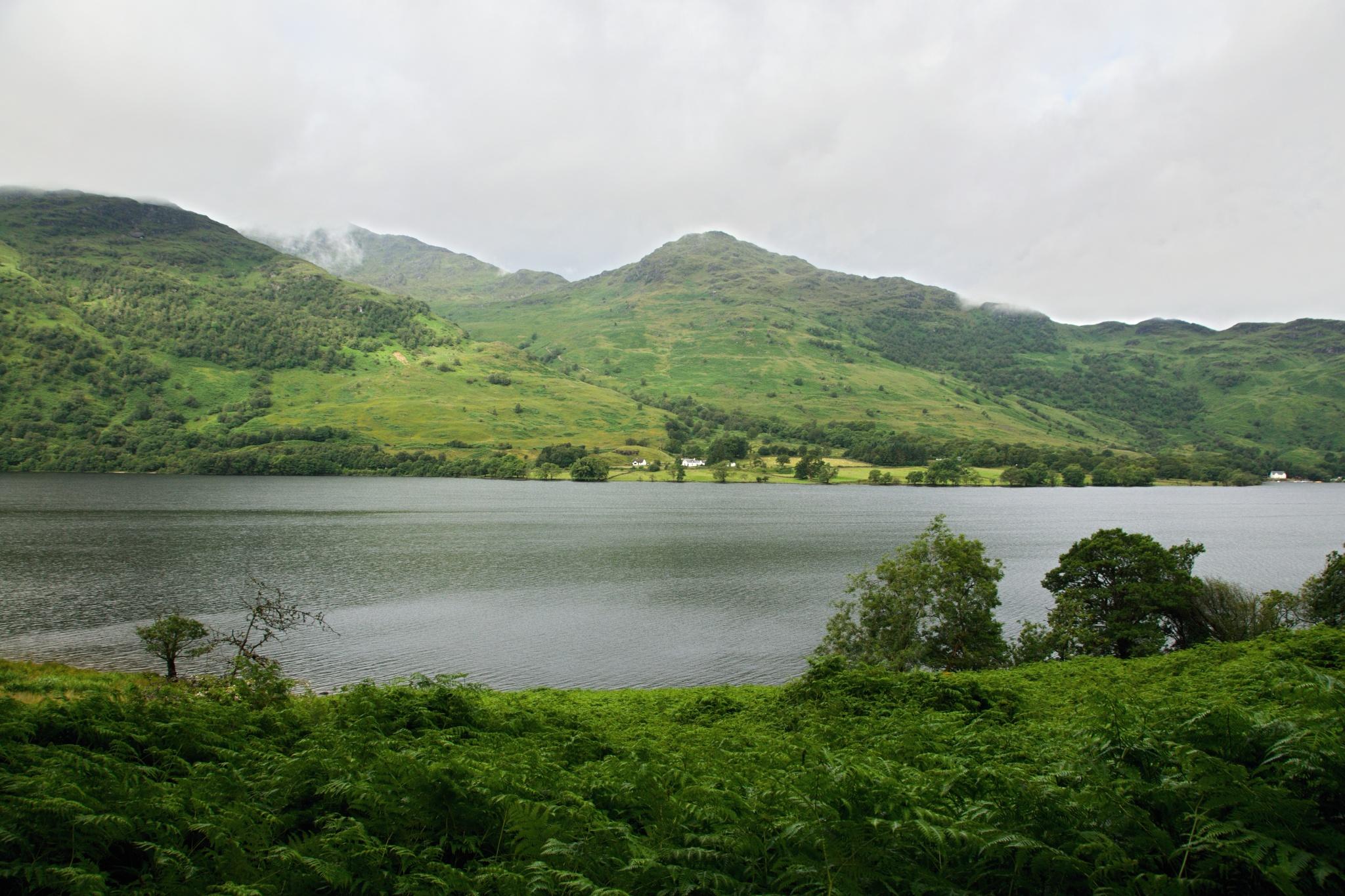 Farma na protějším břehu jezera