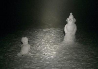 První a asi poslední sněhulák, kterého jsem letošní zimu viděl