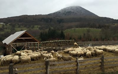 Quo vadis 2016 aneb Vítání jara na Milešovce