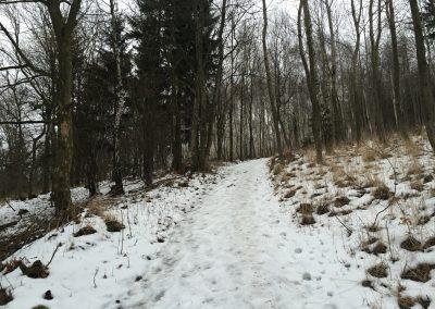 A zase sníh... a led...