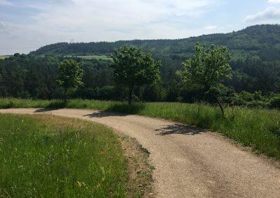 Klesání ke Zbirožskému potoku
