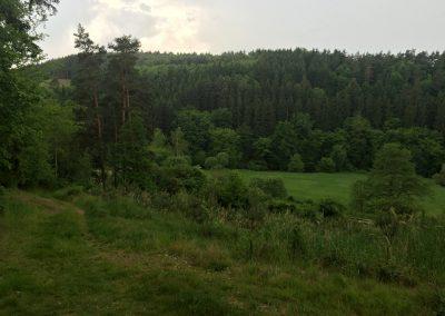 Ohlédnutí na údolí kolem Rakovnického potoka