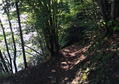 A zase lesní cestička, po tom to běhá samo!