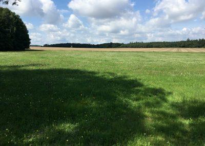 A ještě jedno pole, tentokrát s posedem. NA fotkách to tak nevyniklo, ale byl nádherný den v nádherné krajině:)