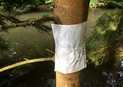 Kontrola u malého jezírka ve Voděradských bučinách
