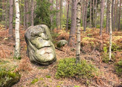 Suché kapradí, listnatý les, zajímavé kameny, skály...
