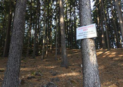 Cedule na každém druhém stromě. Ano, je tu vojenský újezd