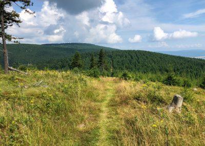 Výhled z Tetřevce, nejvyššího bodu Šlápot