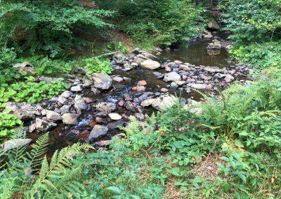 V Hamerském potoku není moc vody...