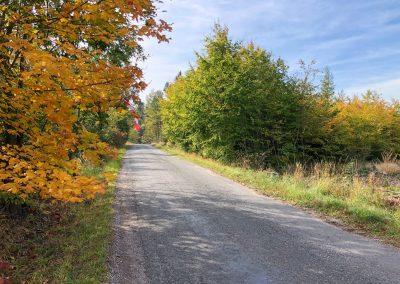 Podzim v plném proudu.