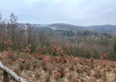 Vrcholky kopců jsou pocukrované sněhem