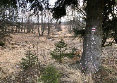 Oblast bývalé vesnice Padrť