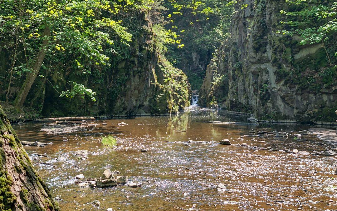 Rakovnická 100 2019 aneb řeky, potoky, brody a jeden přívoz na Křivoklátsku