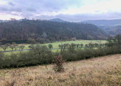 Výhled na údolí Berounky