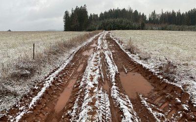 Stovka Podkrkonoším 2020 aneb bláto, louže, marast, zima, déšť a sníh